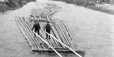 Cand plutaritul pe Bistrita tinea in viata 25.000 de familii. Secretele disparitiei unei gaselniti comerciale care producea castiguri fabuloase