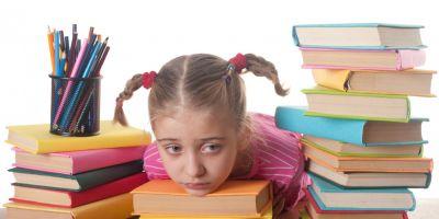 Viziunea despre temele pentru vacanta. Legea zice