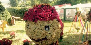 FOTO Aranjamente florale spectaculoase la Ziua Rozelor de la Ciumbrud, capitala neoficiala a trandafirilor in Romania