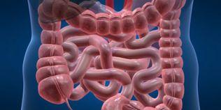 Semnele cancerului de colon si de rect. Investigatia medicala care diagnosticheaza cancerul fara biopsie clasica